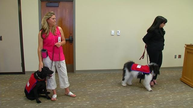 Dogs Used In Oklahoma Courtrooms To Comfort Crime Victims