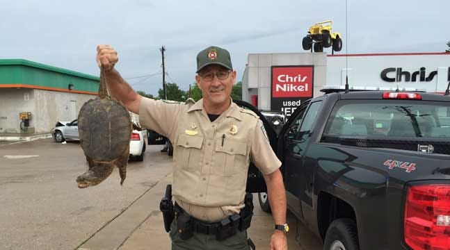 Suspect's Snapping Turtle Surprises Tulsa Police, Gives Game Warden Education
