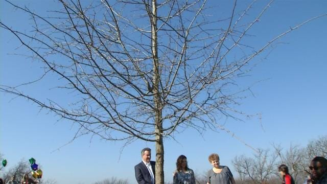 Memorial Tree Grove At Chandler Park Dedicated To Nate Waters