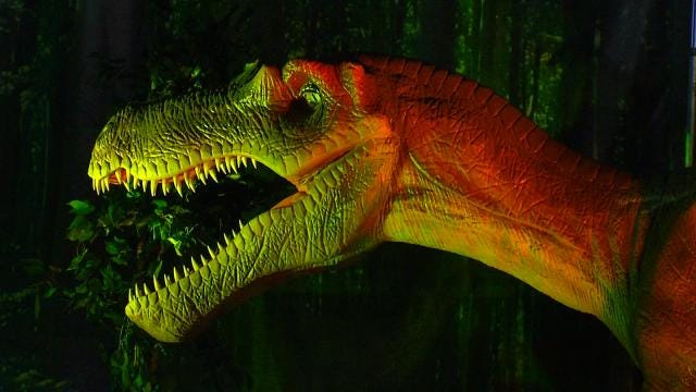 'Discover The Dinosaurs' Exhibit In Downtown Tulsa