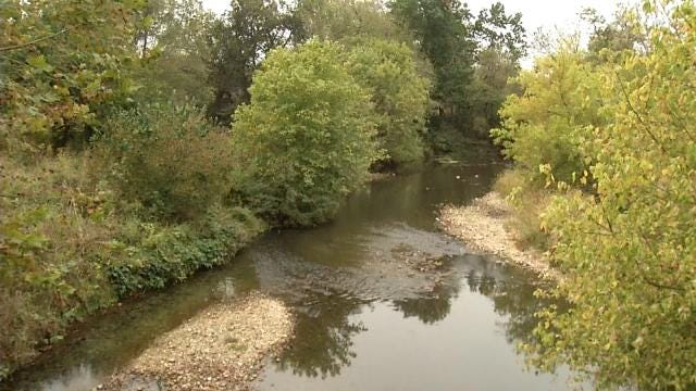 Biologist: Waste Water Kills Thousands Of Delaware County Fish