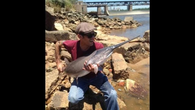 Summer Rains Leave Tulsa Paddlefish In Uncharted Water