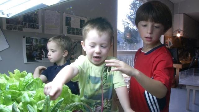 Tulsa Kids Learning Hydroponic Gardening