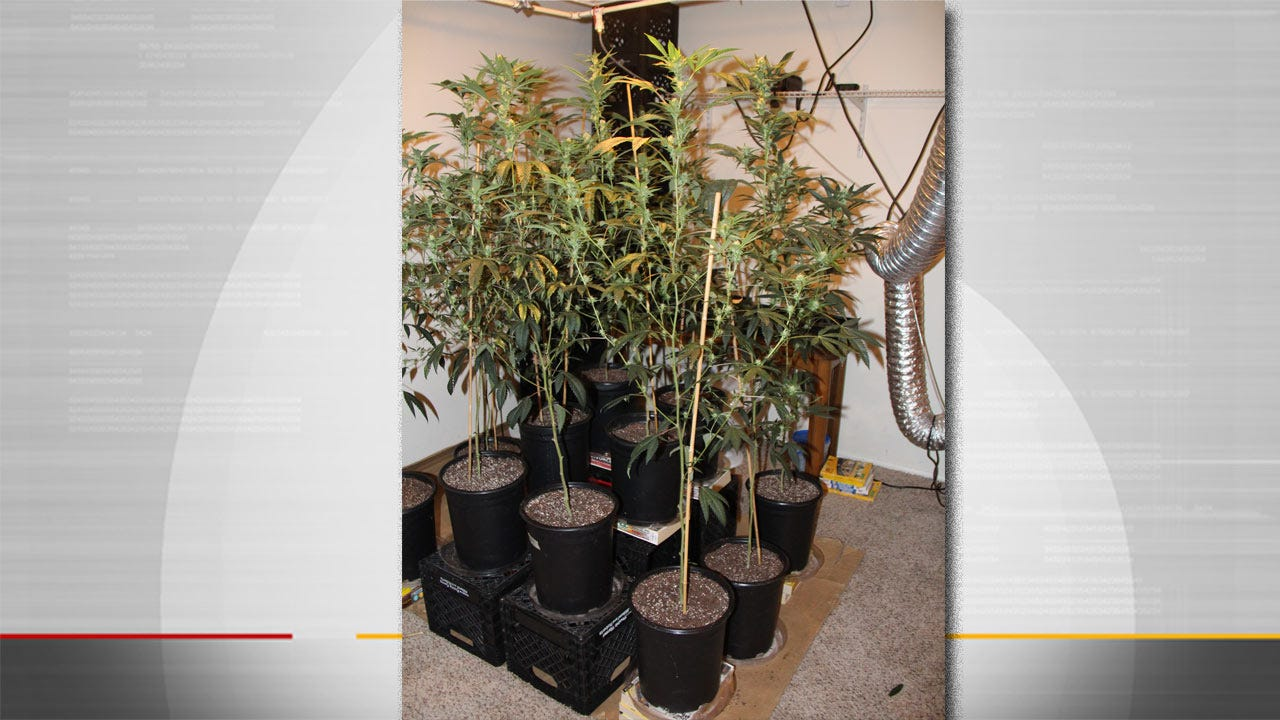 Suicide Call Leads Owasso Police To Marijuana Growing Operation