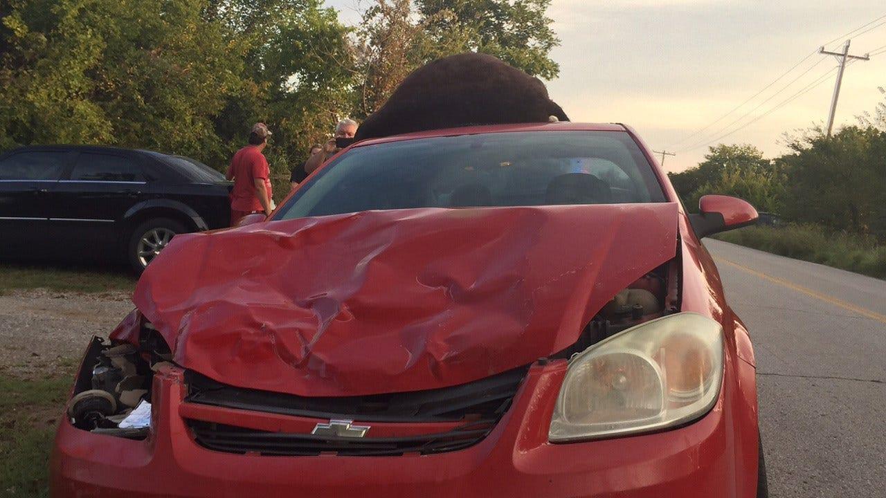 Car Collides With Donkeys Near Mannford