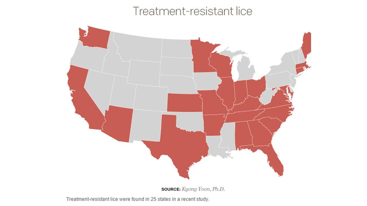 'Super Lice' A Concern As Kids Return To School
