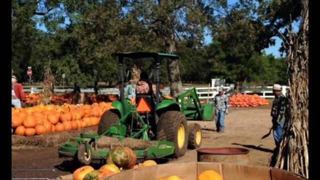 Stolen Tractor Creates More Work For Bixby Farmer