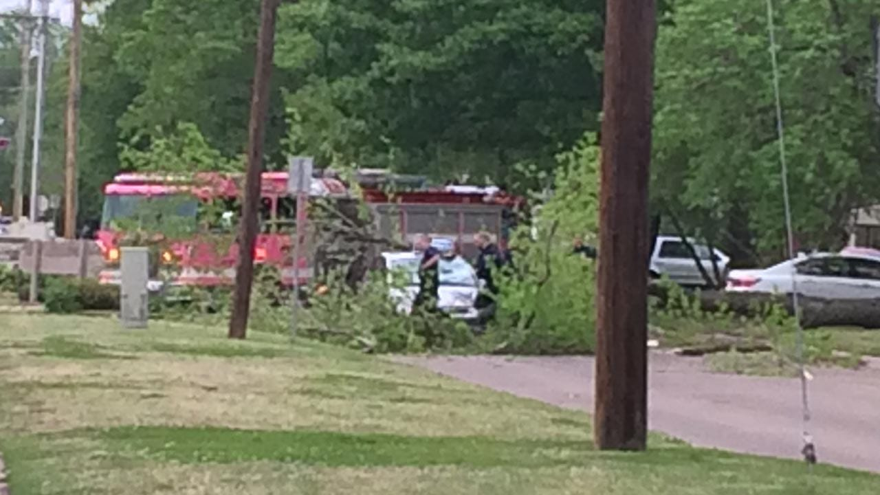 Tree Falls On Jimmy John's Delivery Car In Brookside