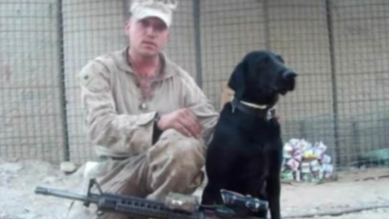 Afghanistan Vet Reunites With Dog, Shares Story In Documentary