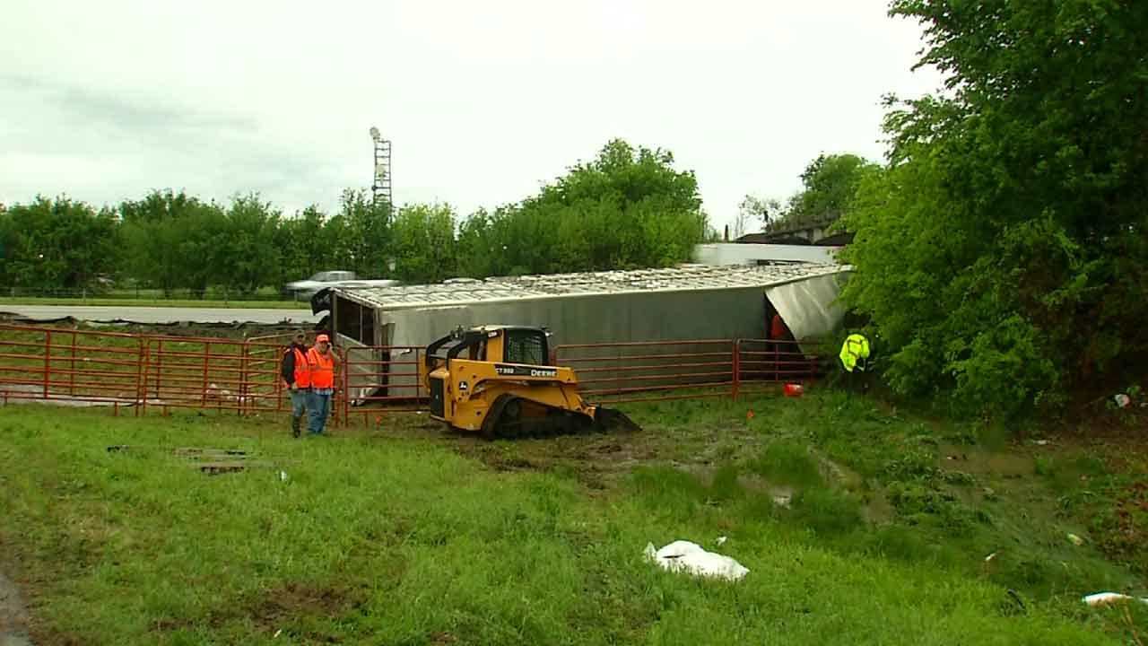 Neighbors Wrangle Escaped Cattle After Semi Turns Over Near Catoosa