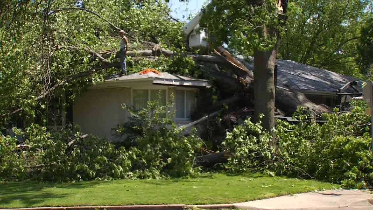 Taking Care Of Trees Can Prevent Damage During OK Severe Weather