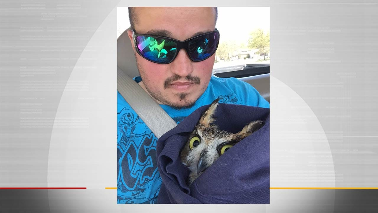 Owl Rescued From Soccer Net By OU-Tulsa Groundskeeper
