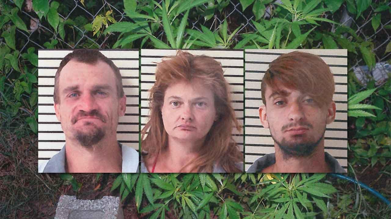 Three Coweta Residents Arrested After Marijuana Plants Found