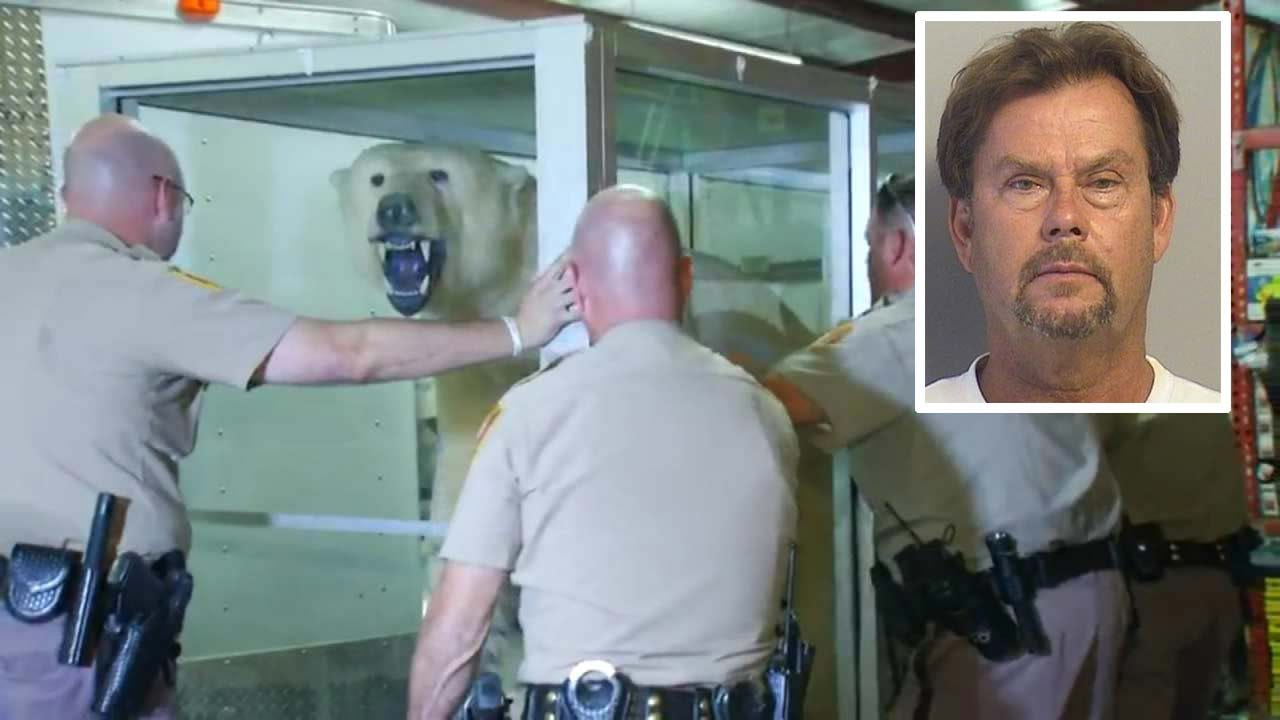 BA Man Accused Of Stealing Polar Bear Pleads Not Guilty