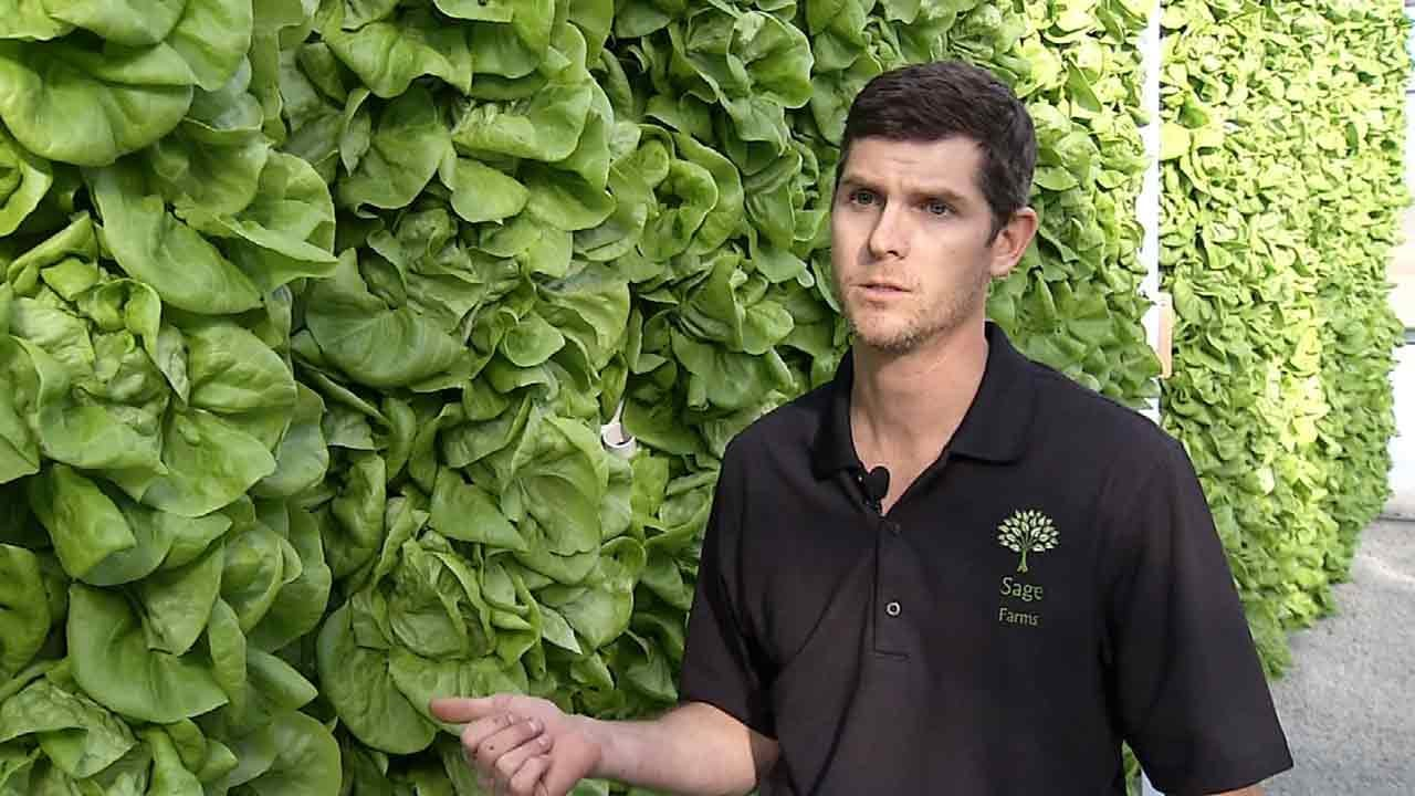 From Farm To Table: Glenpool Farmer Offers 'Ultimate In Freshness'