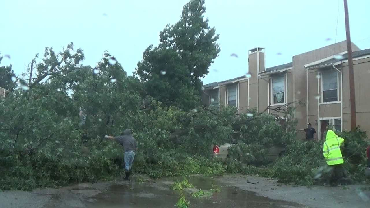 City To Collect Greenwaste In Areas Impacted By Recent Windstorm