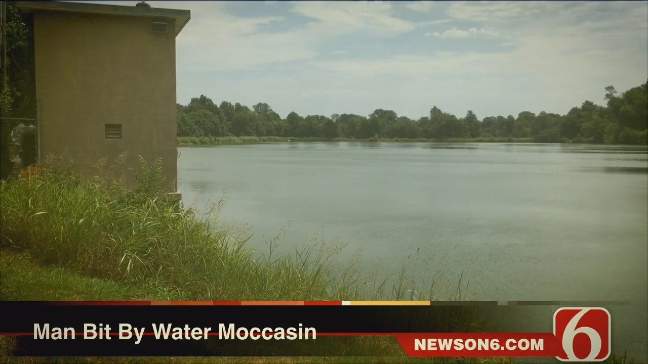 Man Bitten By Water Moccasin While Fishing On Collinsville City Lake