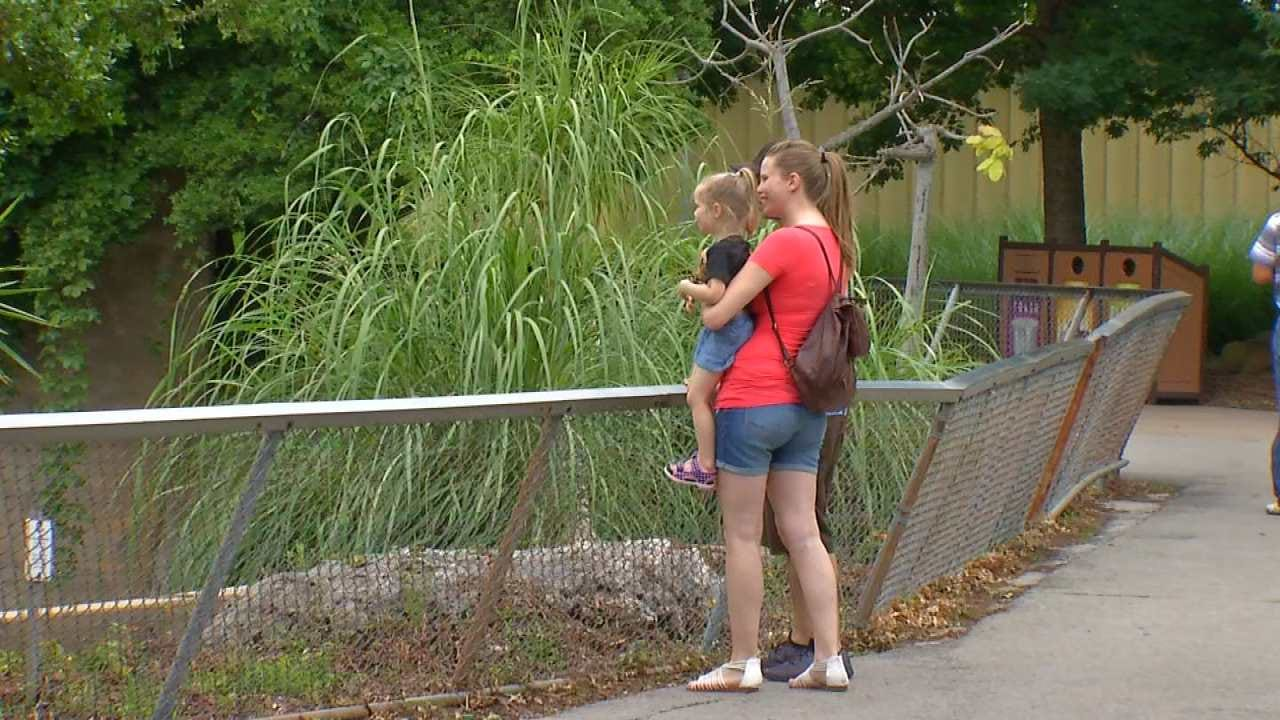 Tulsa Zoo Confident Safety Measures In Place