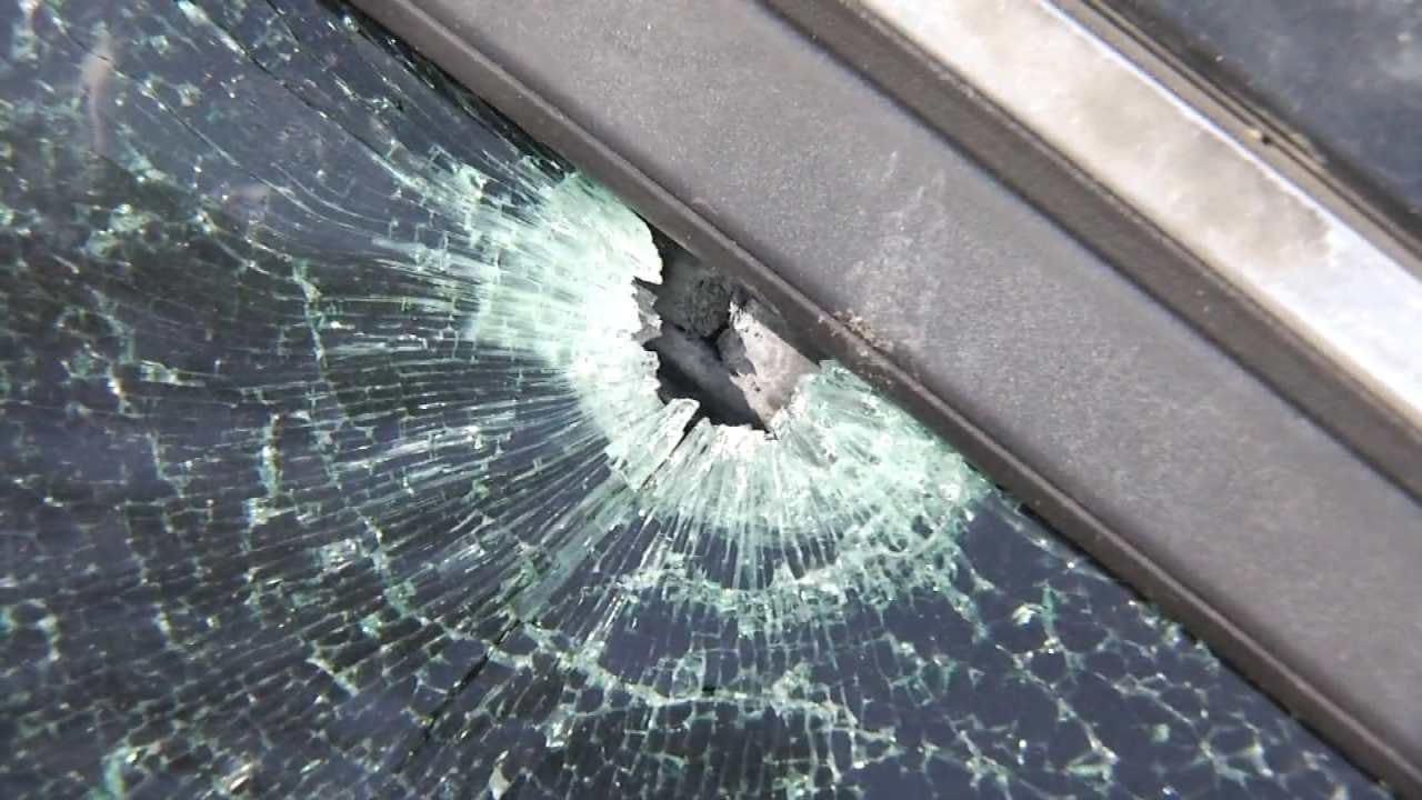 Tulsa Police: Man Driving With Dog When Car Shot
