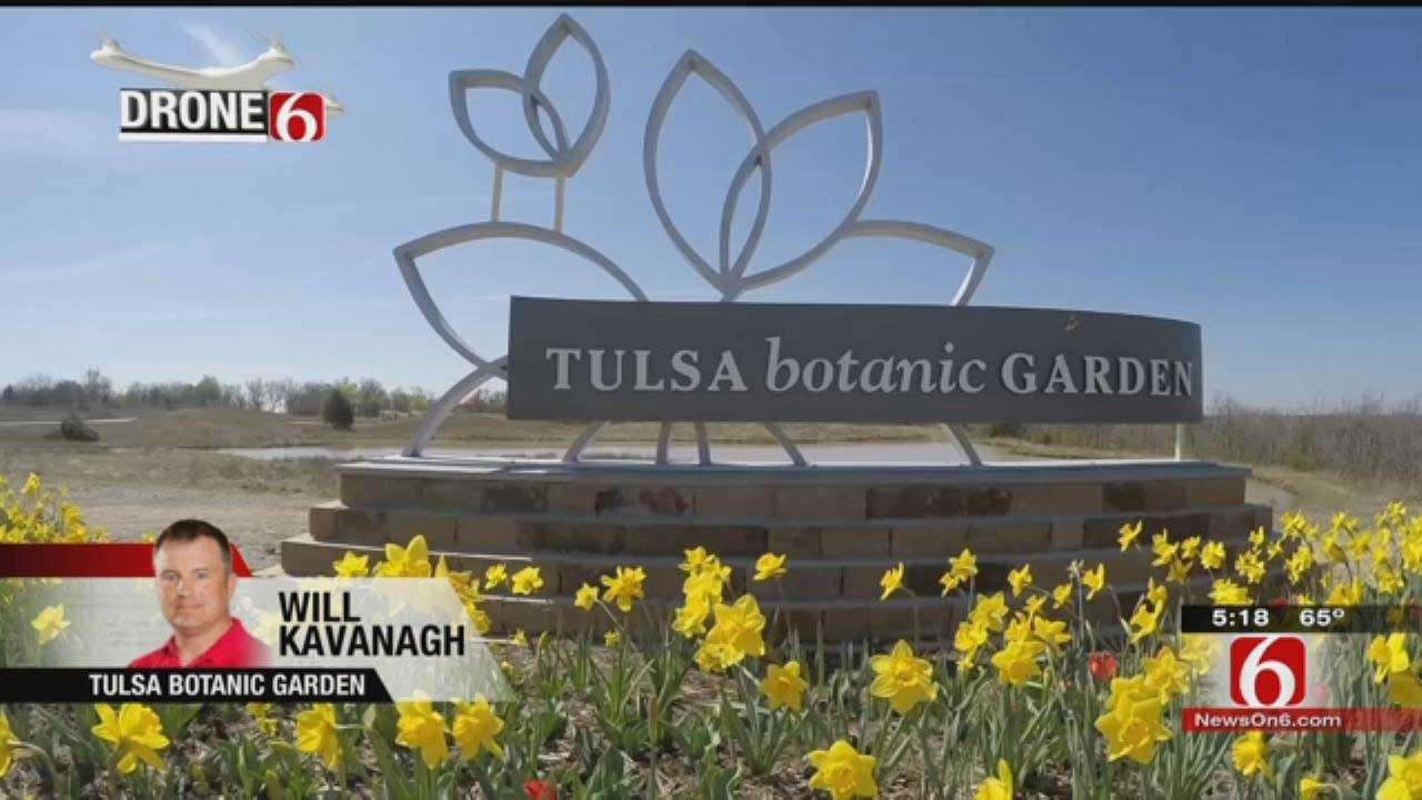 Drone 6 Flies Over Tulsa Botanic Garden