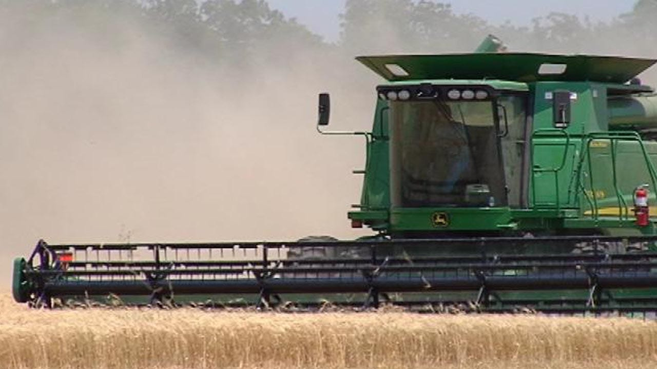 Oklahoma Wheat Production Predicted To Rebound From Lows