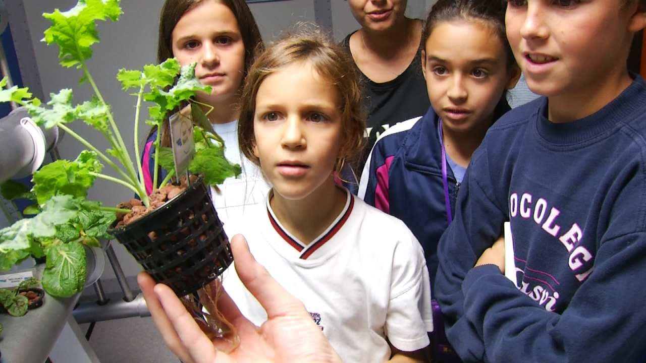 Museum Exhibit Shows How To Grow Food In Space