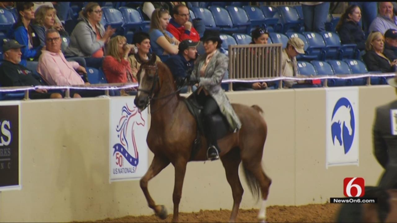Tulsa Hosts 50th Annual Arabian National Horse Show