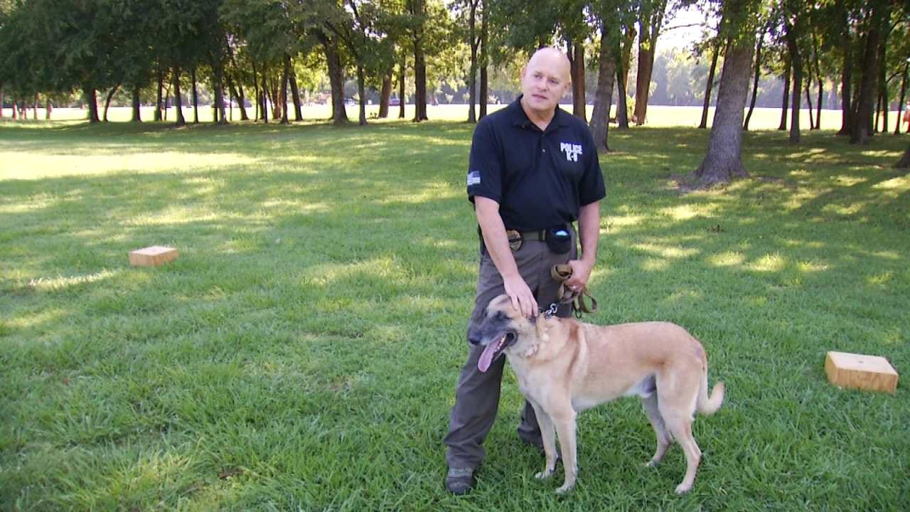 Green Country Officer and K9 Give Free Drug Demonstrations