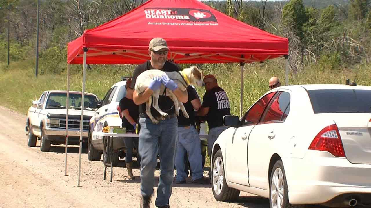 Multiple Animals Seized From Creek County Home For Second Time