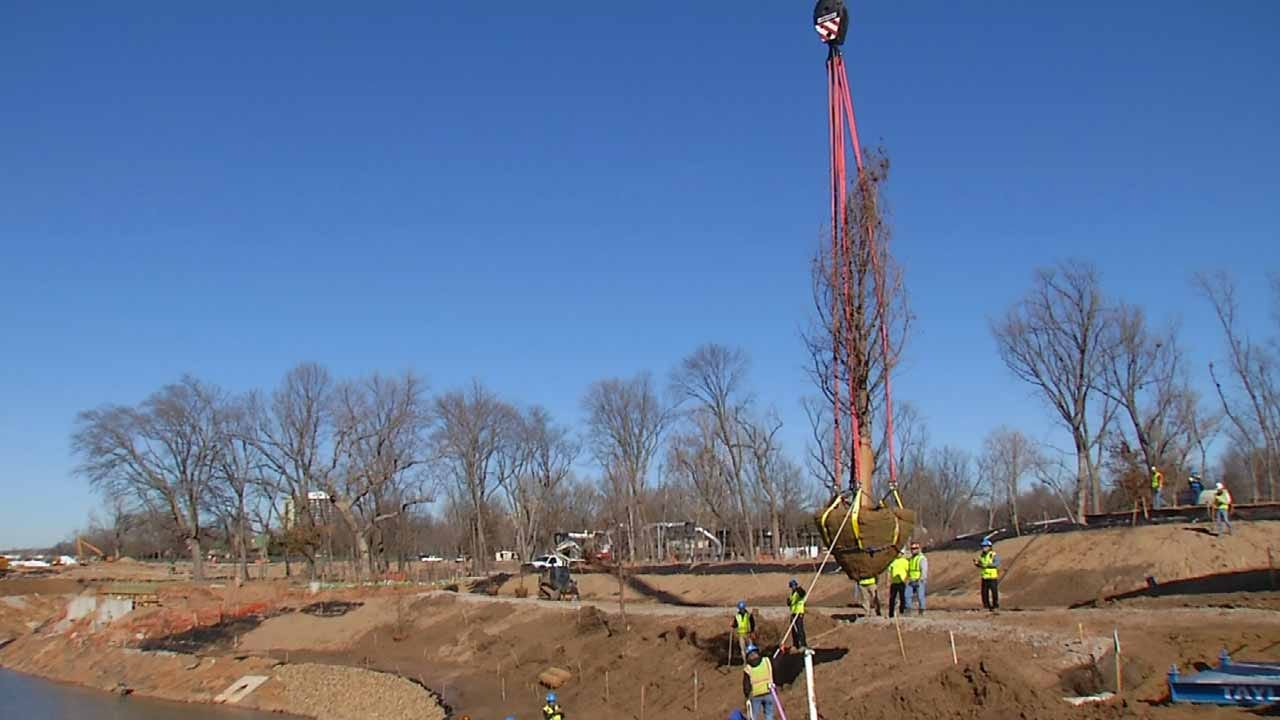 Tree Installation Marks Beginning Of Landscape Work At Gathering Place