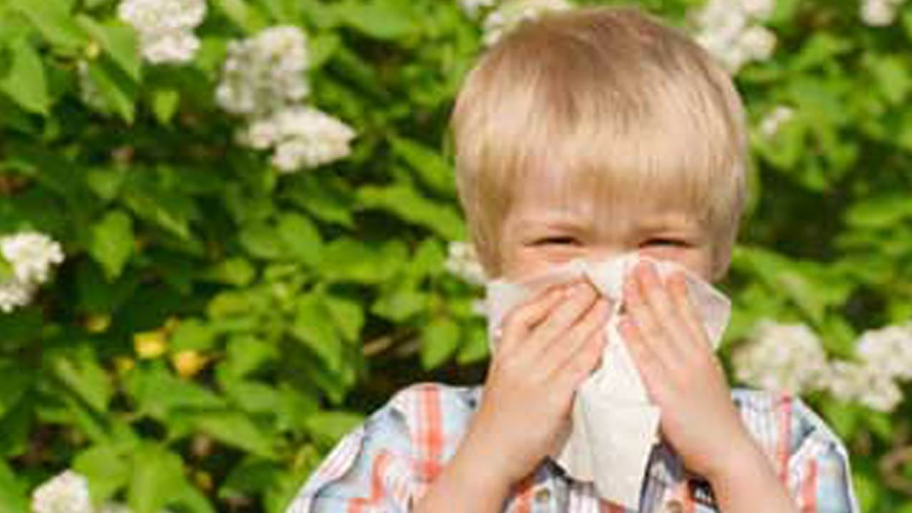 Many Kids Misdiagnosed With Penicillin Allergy, Study Warns