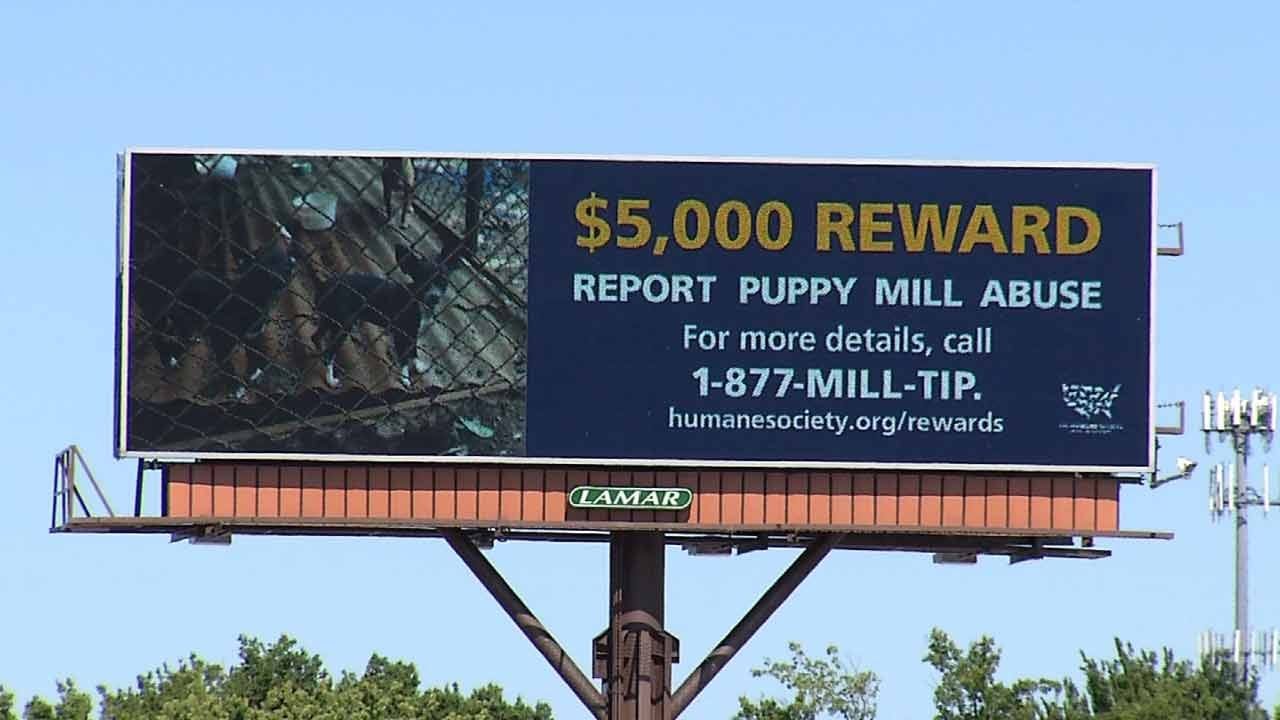 Humane Society's New Campaign Targets Illegal Oklahoma Puppy Mills