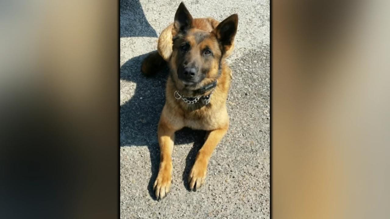 OHP's K9 Troopers To Get Bullet-Proof Vests