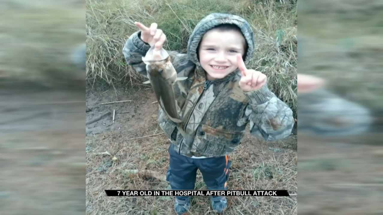 """Collinsville 7-Year-Old Recovering From """"Vicious"""" Dog Attack"""