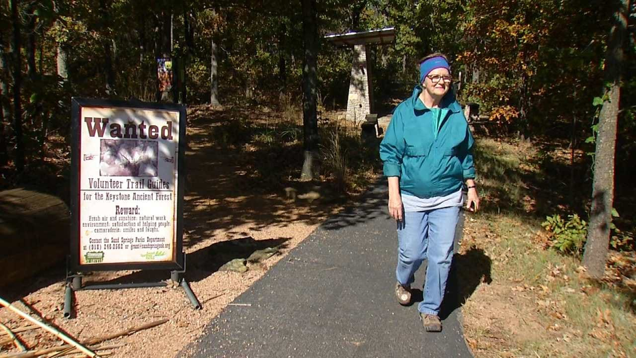 New Walking Trail Through Sand Springs Ancient Forrest
