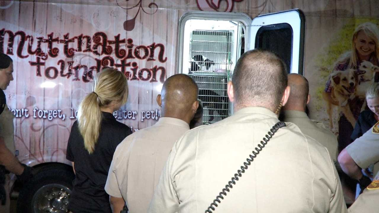 Miranda Lambert Calls On Tulsa Deputies To Help With Harvey Pets