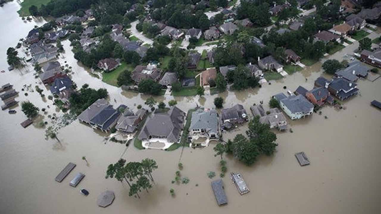 Harvey's Floodwaters Bring Risk Of E. coli, Mold, Mosquitoes