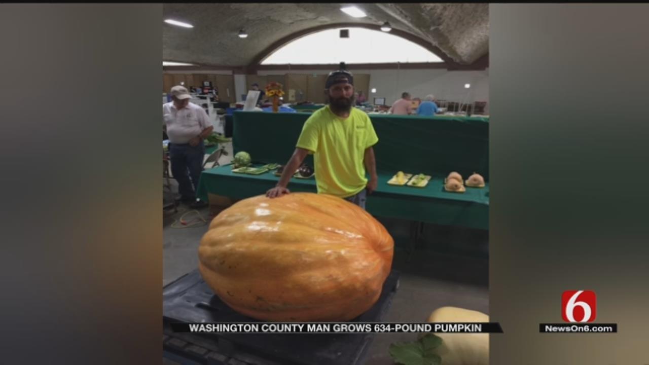 634-Pound Pumpkin Wins Washington County Contest