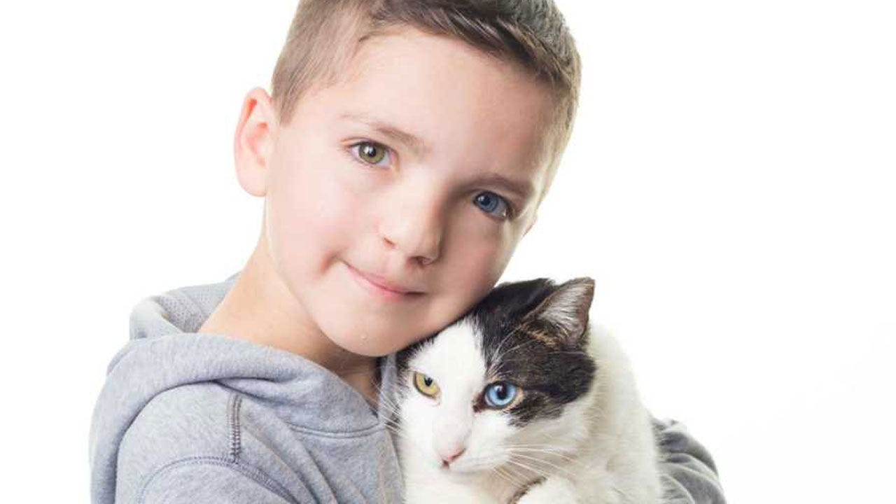 Bullied Owasso Boy - And His Cat - Inspiring Others