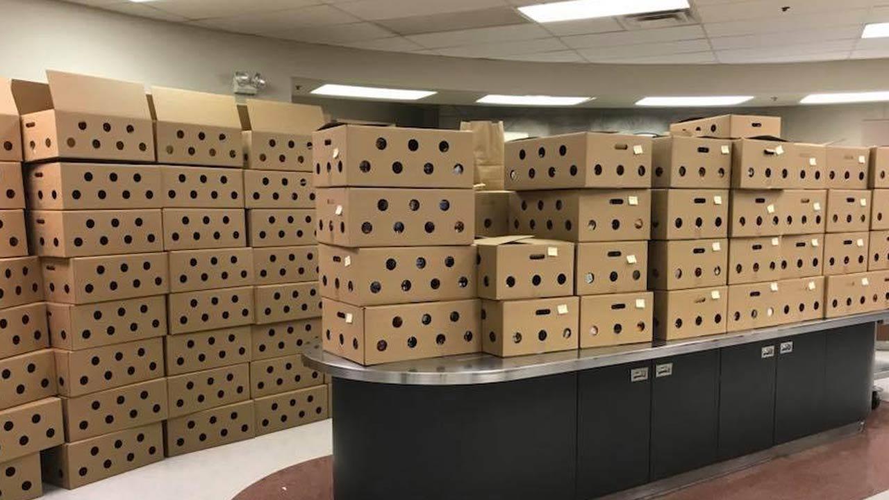 Feeding Tulsa Children During The Teacher Walkout