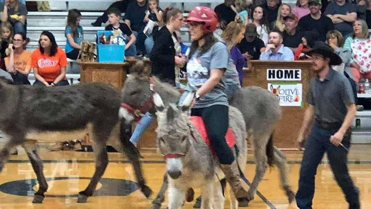 Tess Maune Plays Donkey Basketball For Good Cause