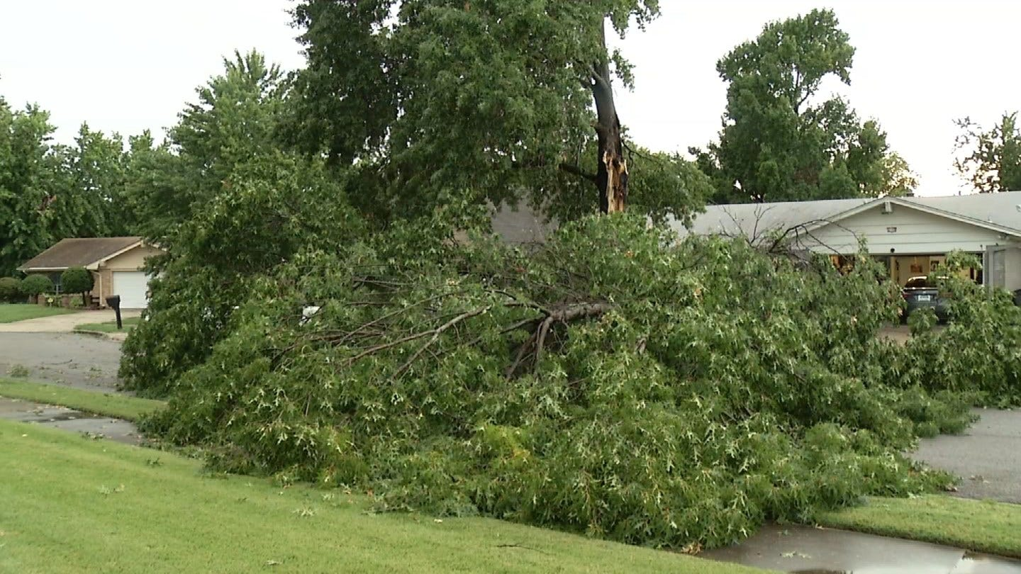 Tree Toppled By Storm Barely Misses Tulsa Home, Damages Truck & Blocks Street Instead