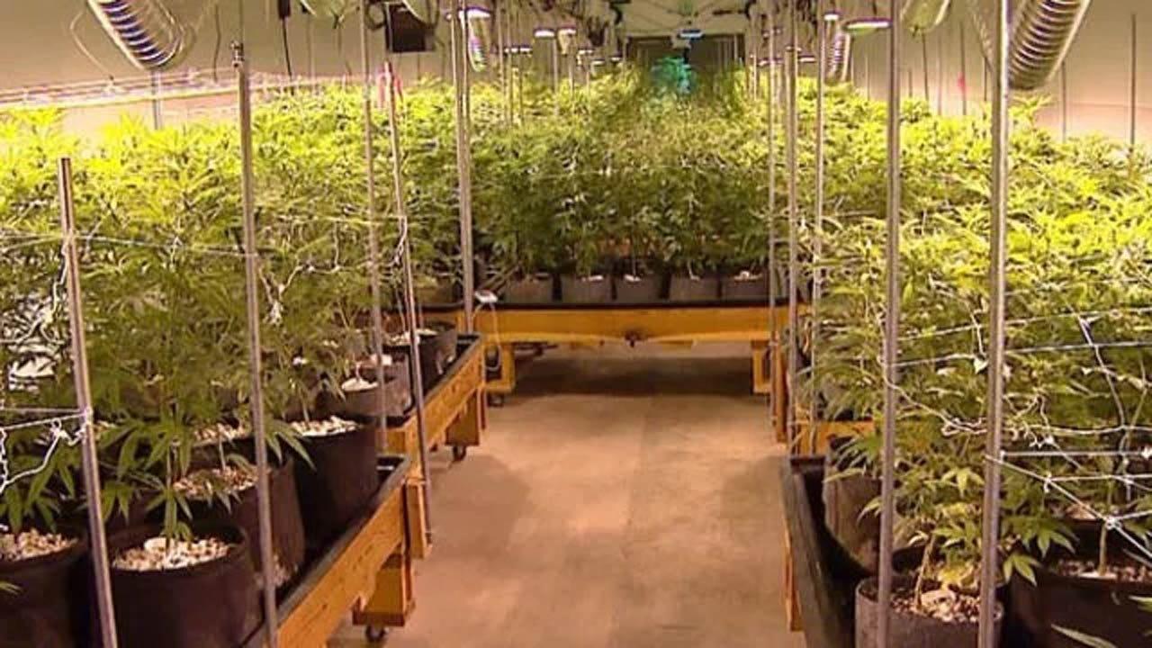 Group Submits Signatures For Oklahoma Recreational Marijuana