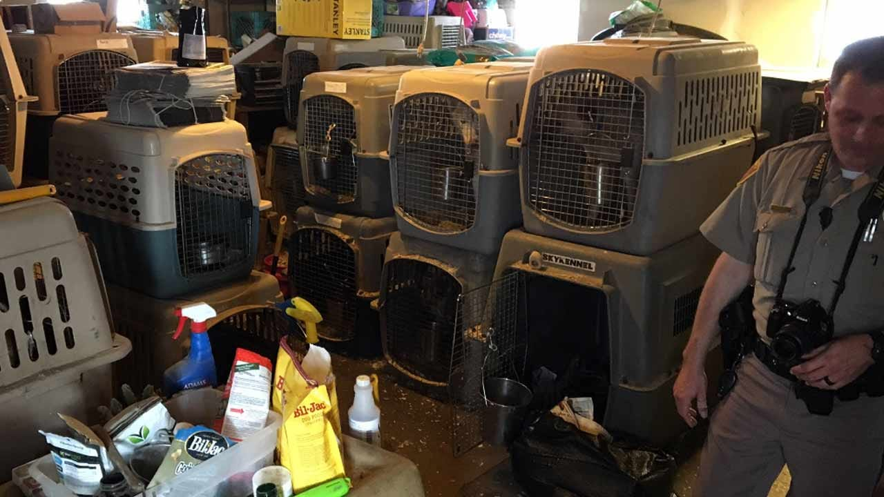 Bond Hearing Held For Tulsa County Woman Accused Of Hoarding 100 Animals