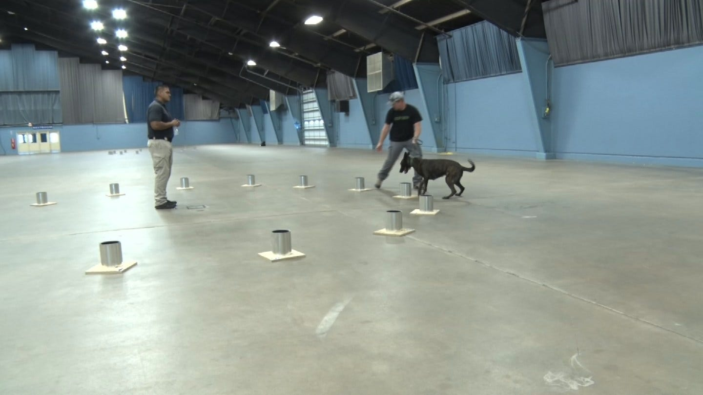 OHP and ATF Host National K-9 Explosive Detection Test