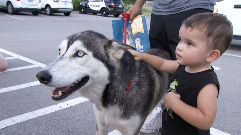 Dog Stolen From OKC Family Reunites After Being Found In Broken Arrow