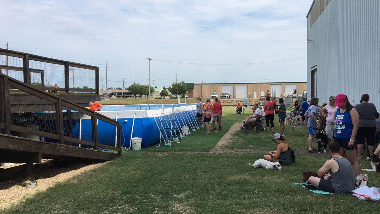 Dog Dock Diving Facility Opens In Broken Arrow