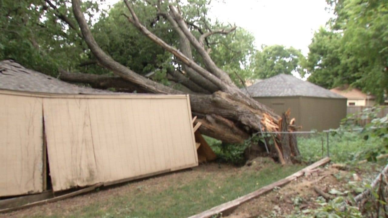 Falling Tree Damages Tulsa Home, Garage, Causes Power Outage