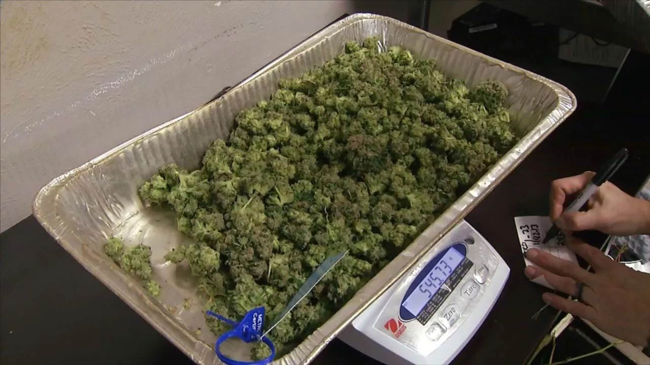 News On 6 Poll Shows Voters Divided On Medical Marijuana Rules