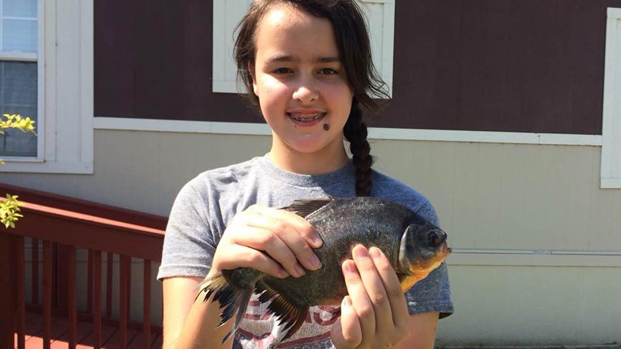 Piranha-Like Fish Caught At Oklahoma Lake